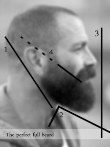 beard perfect